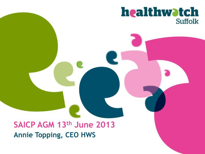 Saicp agm 13 th june 2013
