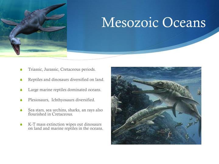 Mesozoic Oceans
