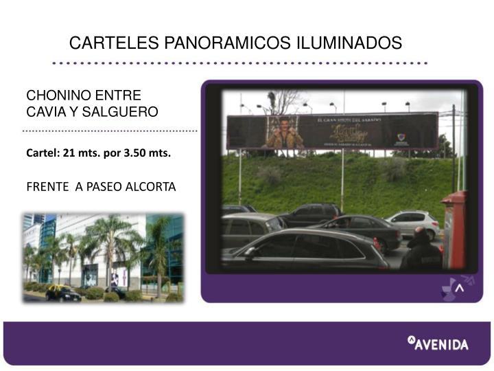 CARTELES PANORAMICOS ILUMINADOS
