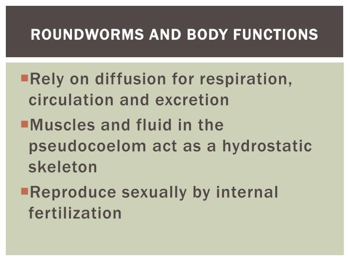 Roundworms and Body Functions