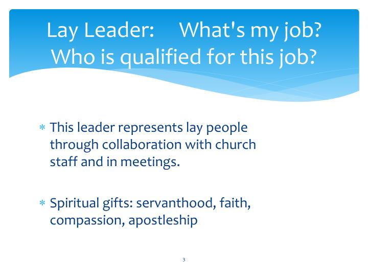 Lay leader what s my job who is qualified for this job