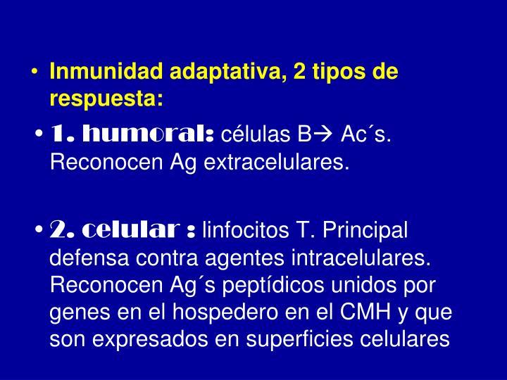 Inmunidad adaptativa, 2 tipos de respuesta: