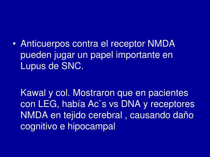 Anticuerpos contra el receptor NMDA pueden jugar un papel importante en Lupus de SNC.