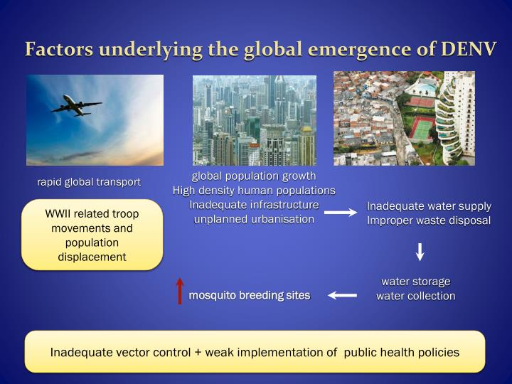 Factors underlying the global emergence of DENV
