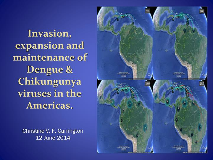 Invasion expansion and maintenance of dengue chikungunya viruses in the americas