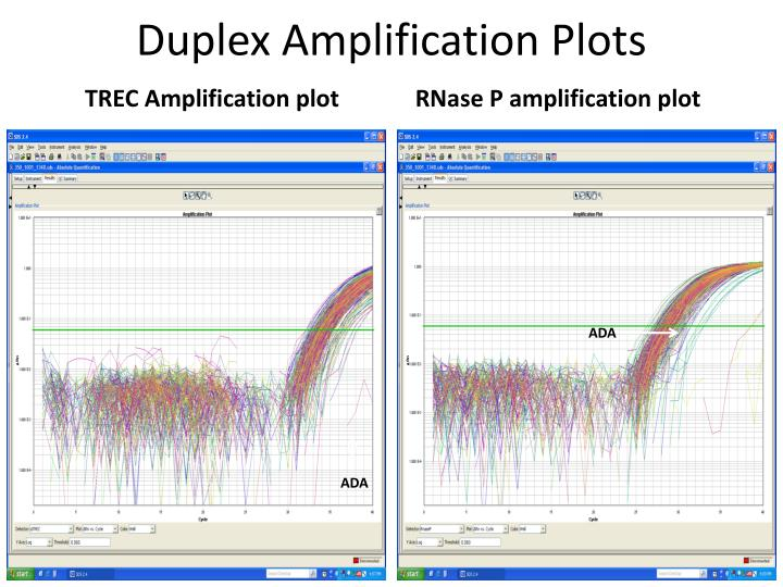 Duplex Amplification Plots