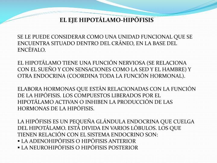 EL EJE HIPOTÁLAMO-HIPÓFISIS
