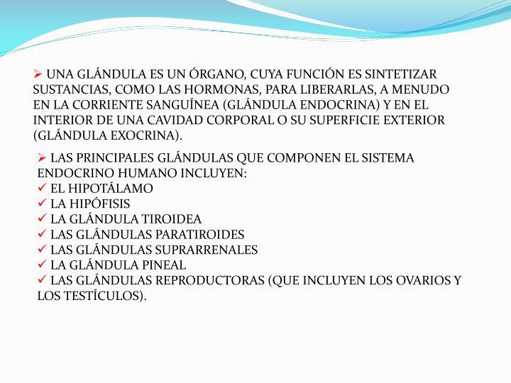 UNA GLÁNDULA ES UN ÓRGANO, CUYA FUNCIÓN ES SINTETIZAR SUSTANCIAS, COMO LAS HORMONAS, PARA LIBERARLAS, A MENUDO EN LA CORRIENTE SANGUÍNEA (GLÁNDULA ENDOCRINA) Y EN EL INTERIOR DE UNA CAVIDAD CORPORAL O SU SUPERFICIE EXTERIOR (GLÁNDULA EXOCRINA).