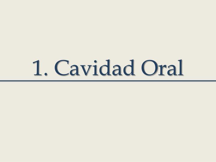 1. Cavidad Oral