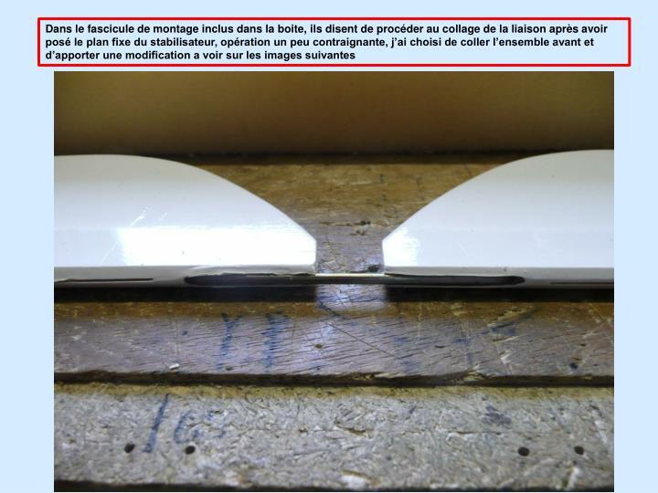 Dans le fascicule de montage inclus dans la boite, ils disent de procder au collage de la liaison aprs avoir pos le plan fixe du stabilisateur, opration un peu contraignante, jai choisi de coller lensemble avant et dapporter une modification a voir sur les images suivantes