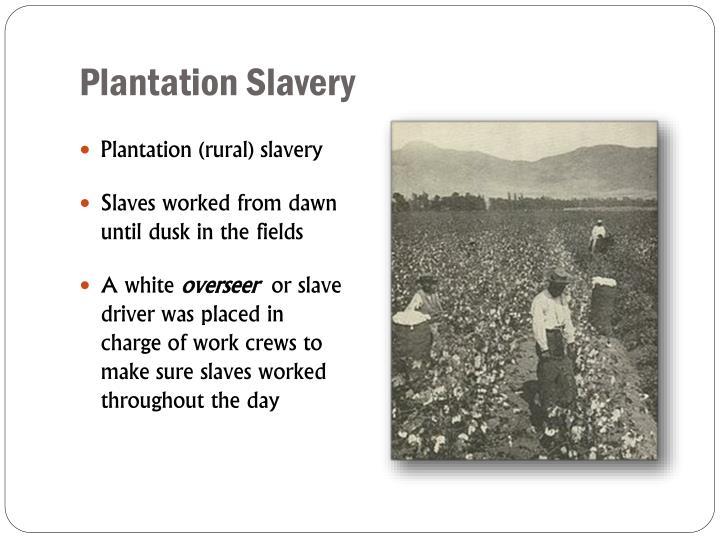 Plantation Slavery