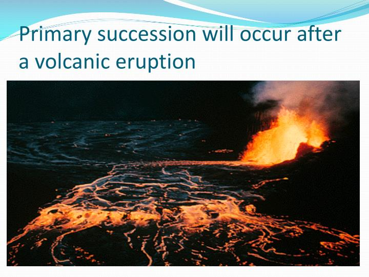 Primary succession will occur after a volcanic eruption
