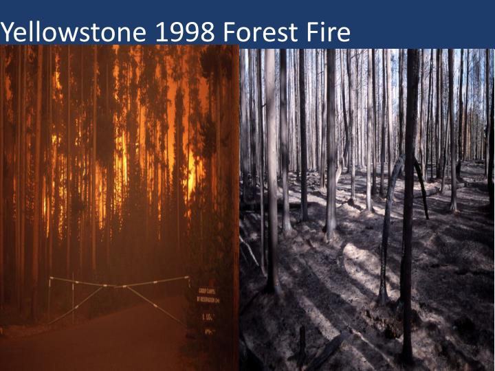 Yellowstone 1998 Forest Fire