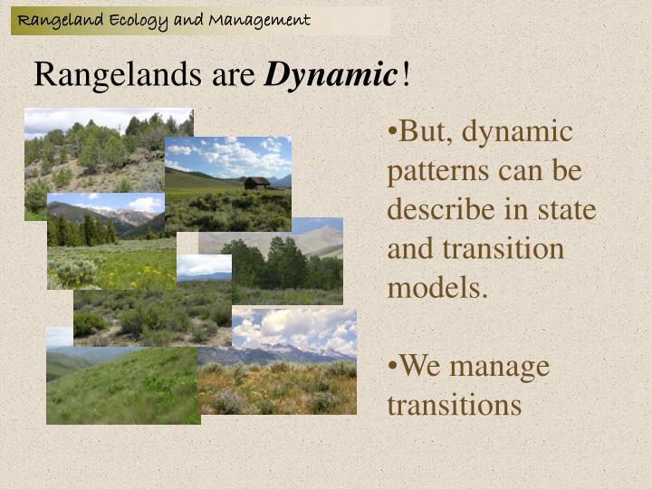 Rangelands