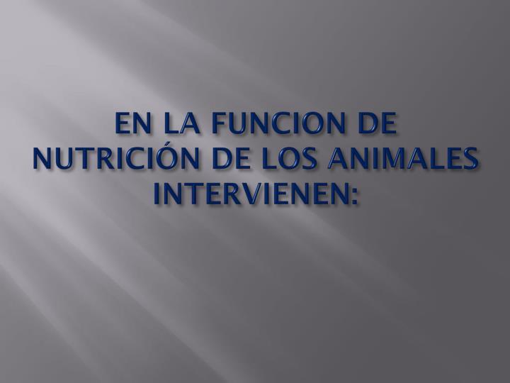 EN LA FUNCION DE NUTRICIÓN DE LOS ANIMALES INTERVIENEN: