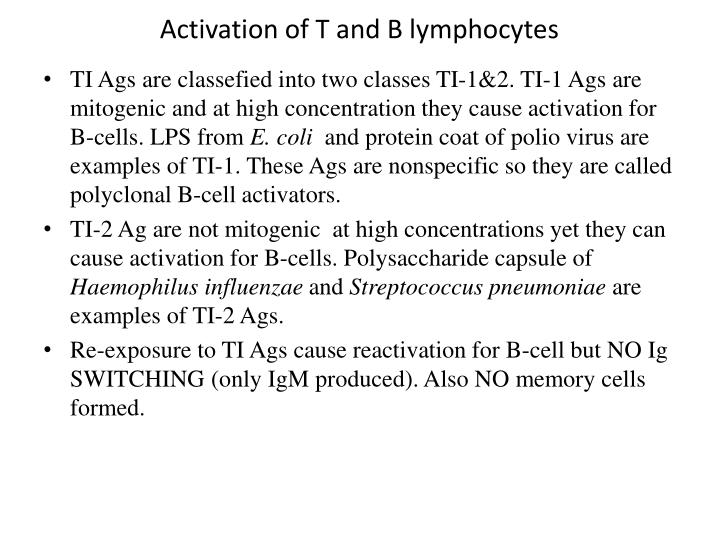 Activation of T and B lymphocytes