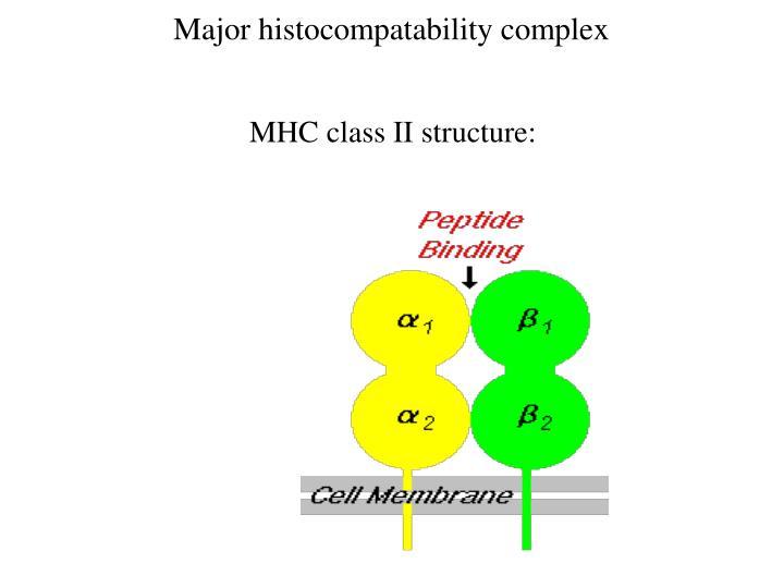 Major histocompatability complex