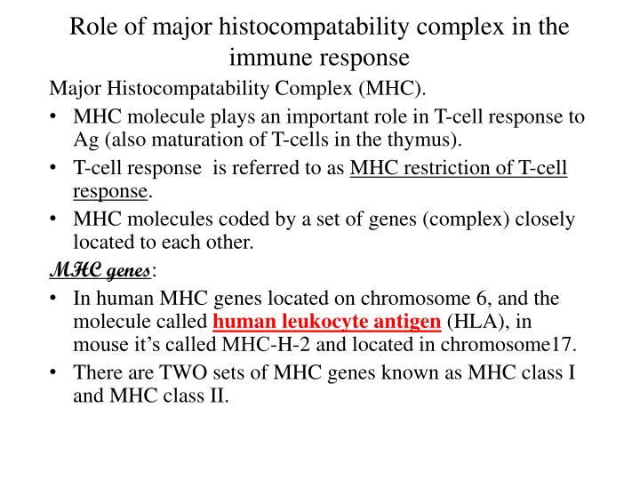 Role of major histocompatability complex in the immune response
