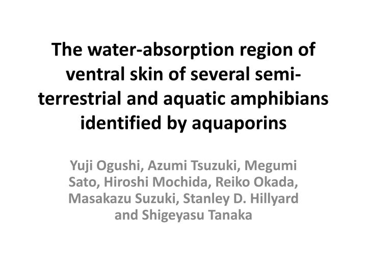 The water-absorption region of ventral skin of several semi-terrestrial and aquatic amphibians ident...