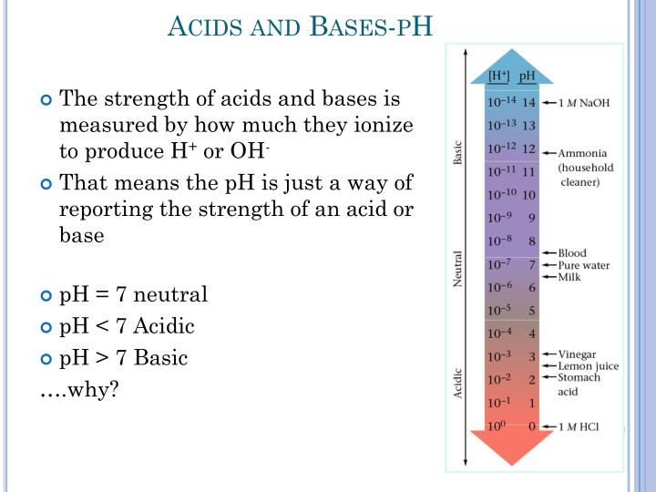 Acids and Bases-pH