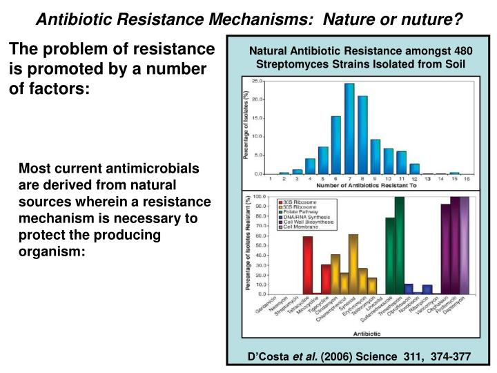 Antibiotic Resistance Mechanisms:  Nature or