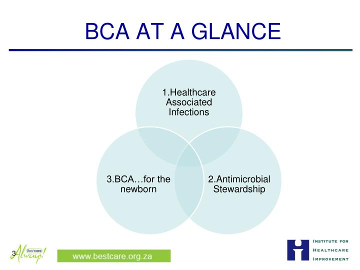 BCA AT A GLANCE