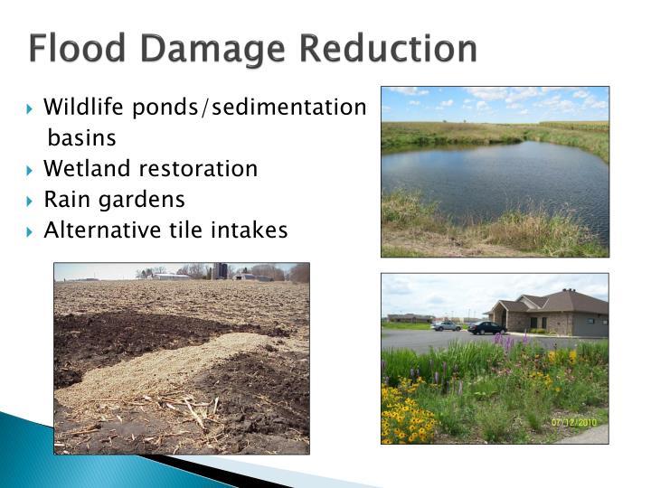 Flood Damage Reduction