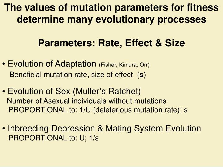 The values of mutation parameters for fitness