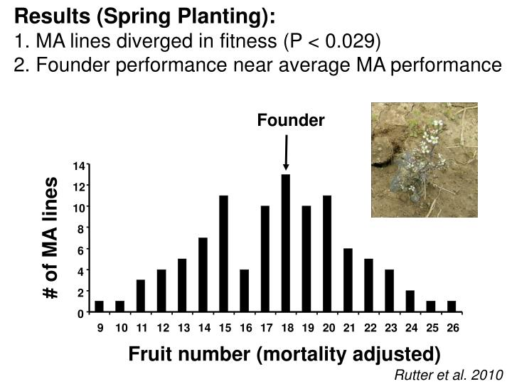 Results (Spring Planting):