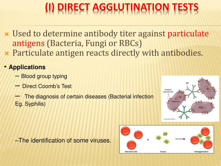(I) Direct Agglutination Tests