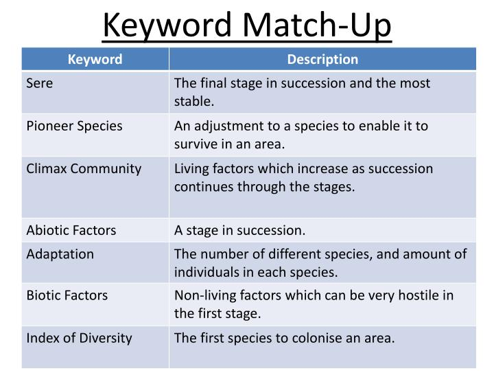 Keyword Match-Up