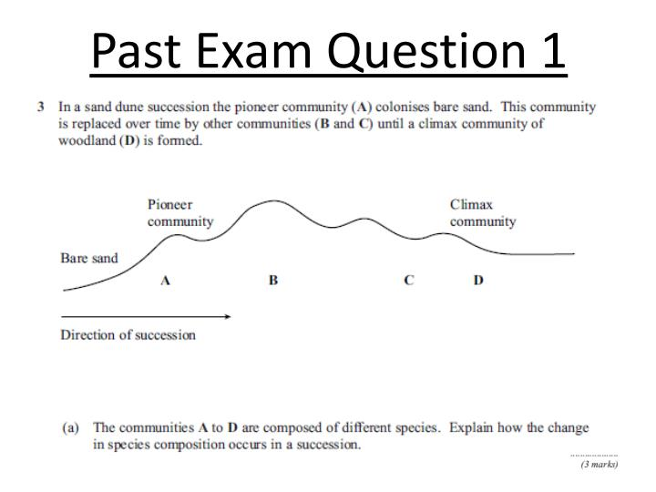 Past Exam Question 1