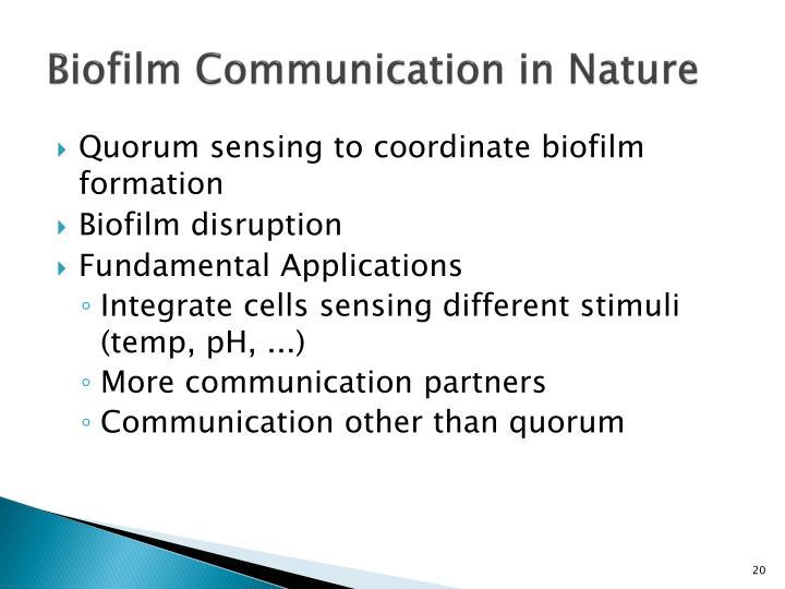 Biofilm Communication in Nature