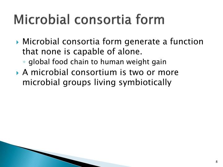Microbial consortia form