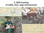 3 gps tracking of cattle deer pigs and possums