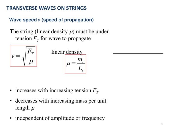TRANSVERSE WAVES ON STRINGS