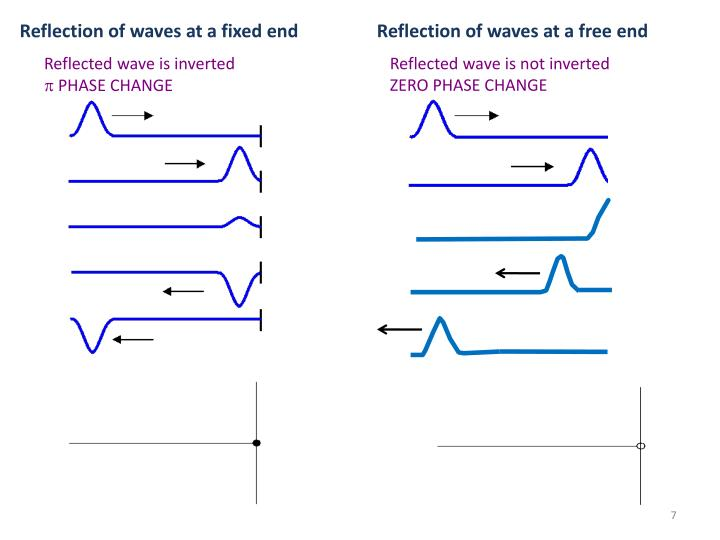 Reflection of waves at a fixed end