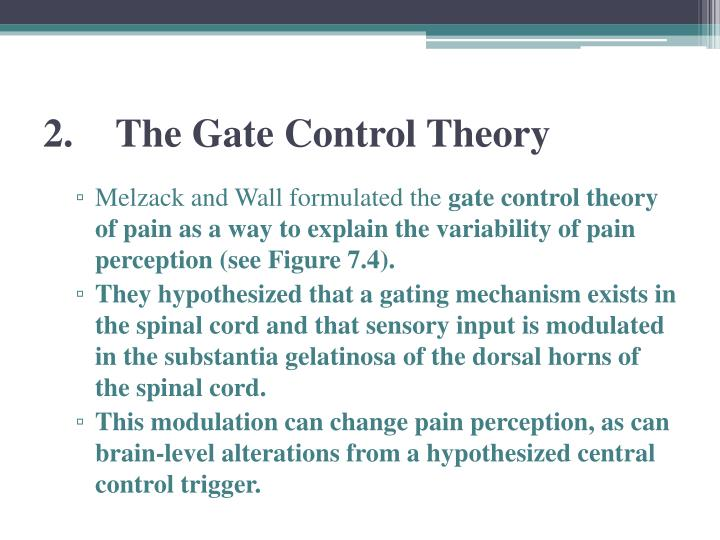 2.The Gate Control Theory