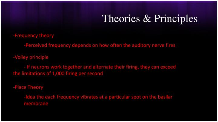 Theories & Principles
