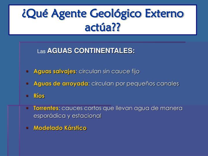 ¿Qué Agente Geológico Externo actúa??