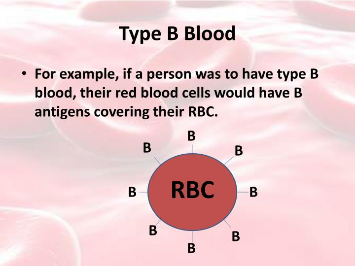 Type B Blood