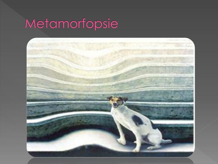 Metamorfopsie