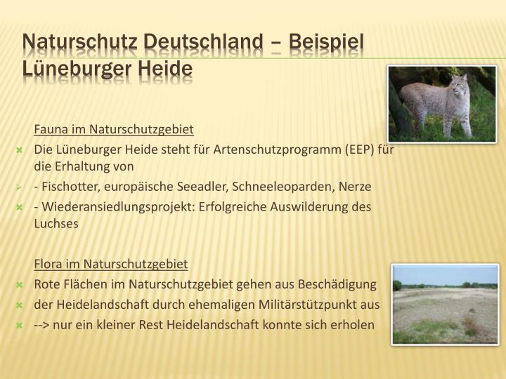 Naturschutz Deutschland – Beispiel