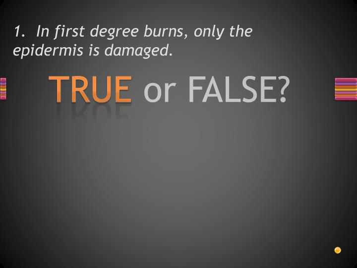 1.  In first degree burns, only the epidermis is damaged.