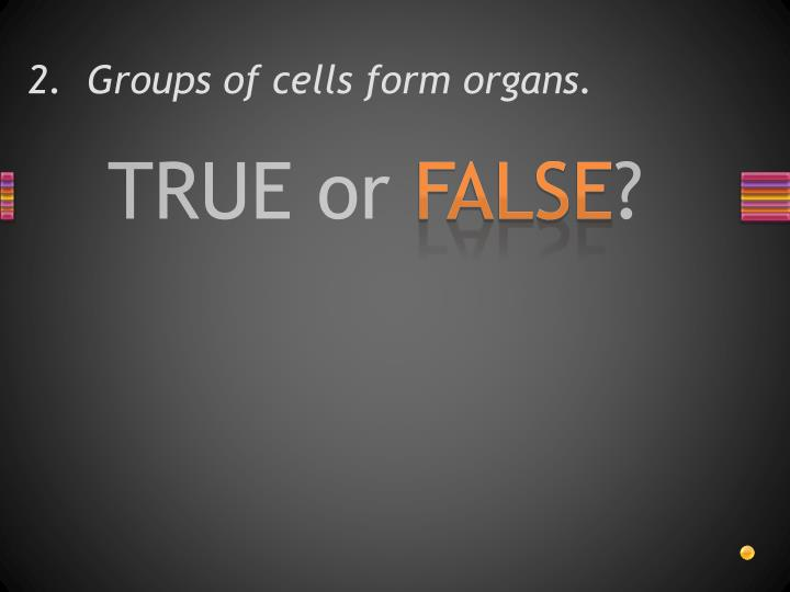 2.  Groups of cells form organs.