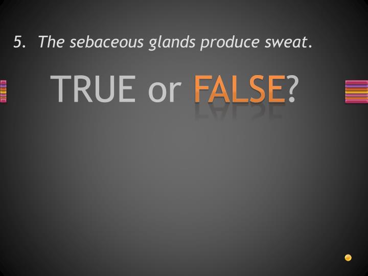 5.  The sebaceous glands produce sweat.