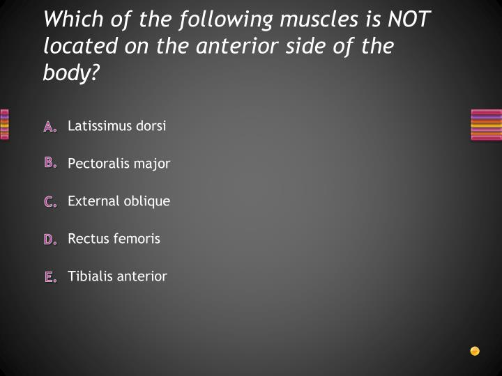 Which of the following muscles is NOT located on the anterior side of the body?