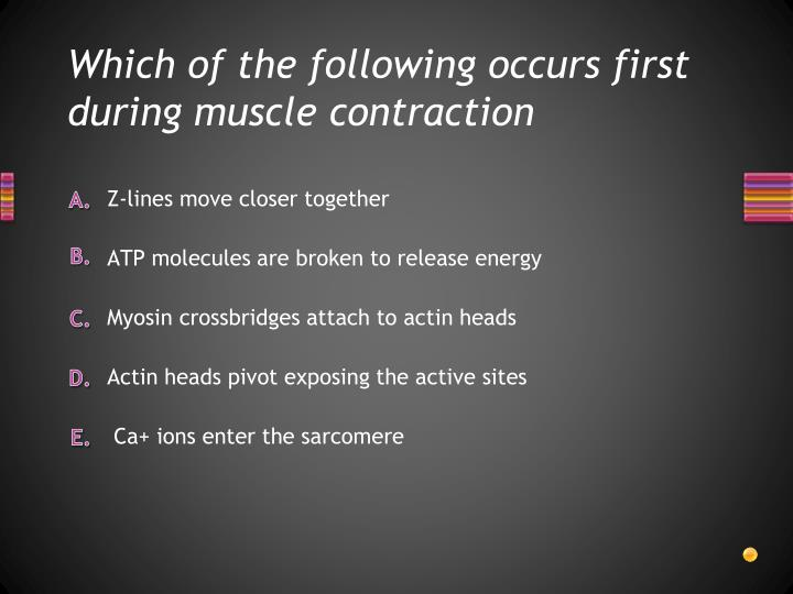Which of the following occurs first during muscle contraction