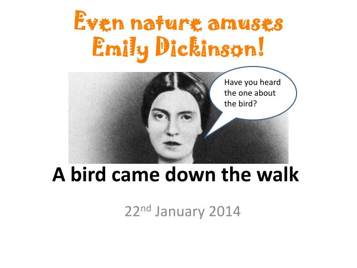 Even nature amuses Emily Dickinson!