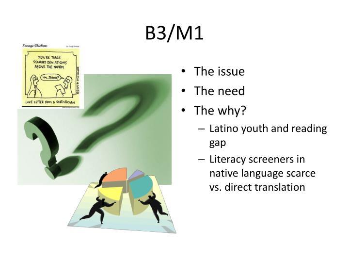 B3/M1